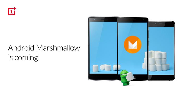 marshmallow_Forum